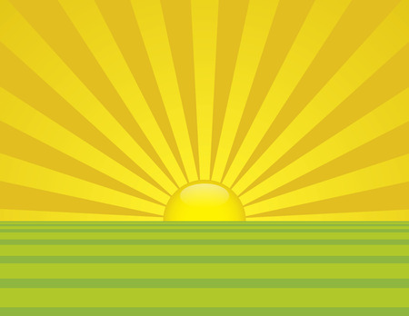 Summer time sunrise with bright yellow and green fields of grass