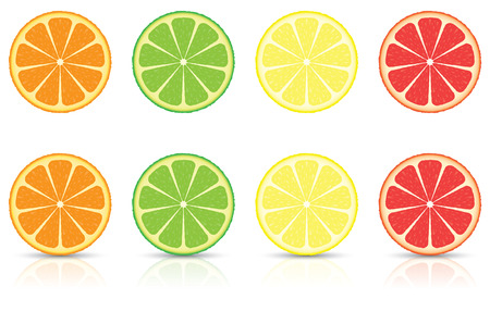 Orange, Lemon, Lime and Grapefruit Citrus Fruit Slices