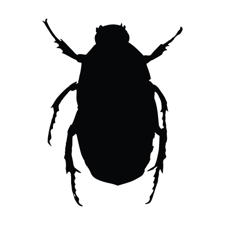 A black and white silhouette of a beetle
