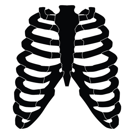 A black and white silhouette of a set of ribs