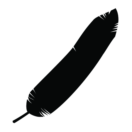 A black and white silhouette of a bird feather