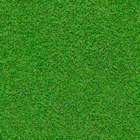 Lush green grass background that will tile endlessly Reklamní fotografie