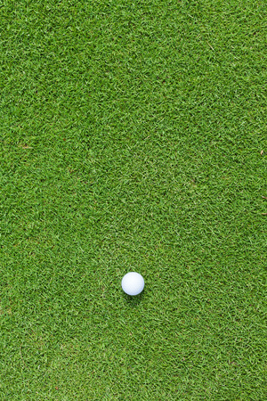 golfball: Golf ball sitting on a golf course putting green