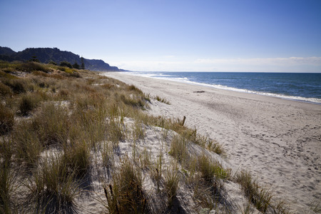 plenty: White sand beach, Papamoa in Bay of plenty, New Zealand