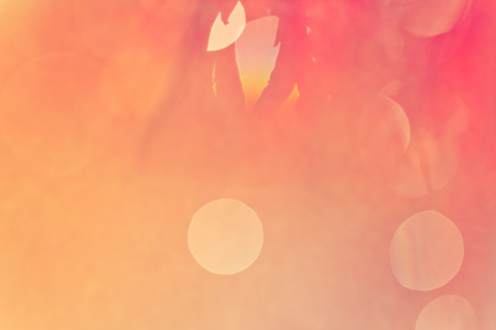Abstract blurry pink and peach background with bokeh