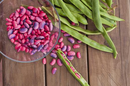 Freshly harvested Scarlett runner beans (Phaseolus coccineus)