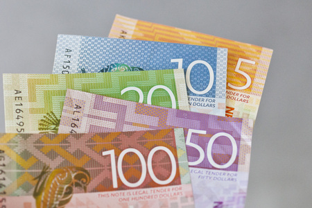 New Zealand cash, money or currency held fanned out on a gray background