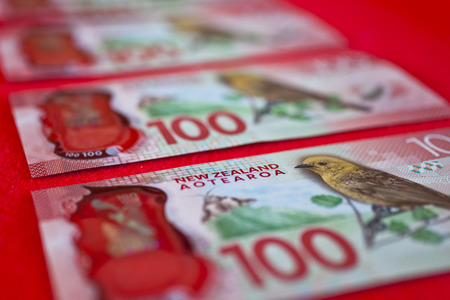 New Zealand currency. Hundred dollar notes on red background