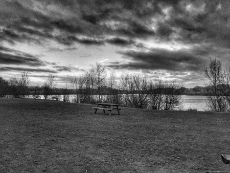 country park: View across the lake at Harrold Country Park