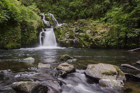 end of the trail: A woodland waterfall tumbles over mossy rocks and into a pool at the end of Sweet Creek Trail in Oregon's coast range between Eugene and Florence. An easy popular local hike for residents and tourists alike. Stock Photo