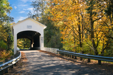 dappled: The pengra covered bridge with dappled sun shining through fall leaves; one of many in Lane County, Oregon near Eugene.