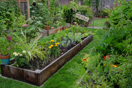 vegetable plants: A raised bed filled with herbs and vegetables is nestled in the center of two other narrow gardens. A rustic, delightful sign adds and artistic accent.