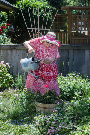 inappropriate: An old granny in straw hat and house dress waters her garden