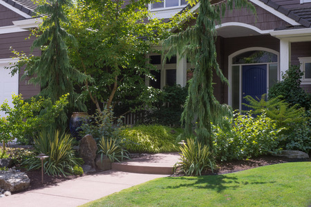 Front entrance to a contemporary home in the Pacific Northwest is almost hidden by beautiful landscdaping. 免版税图像