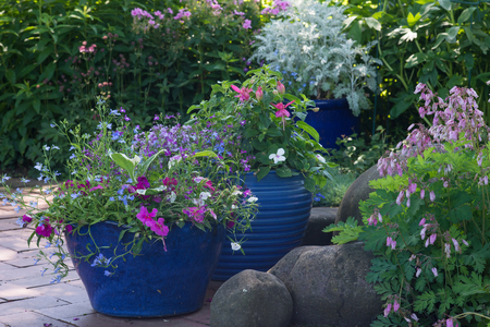 pots: Bright blue pots overflow with colorful flowers in a shaded brick patio. Stock Photo
