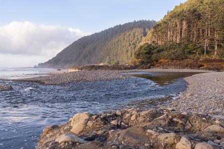 A rocky beach along the coast in Lane County Oregon.