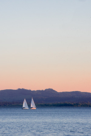 Sailboats on a late afternoon on Fern Ridge reservoir in Eugene, Oregon.