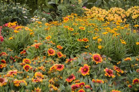 A happy perennial flower garden in a backyard. Standard-Bild