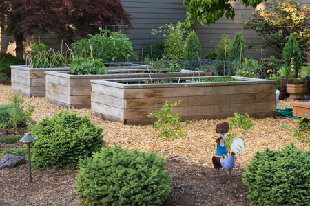 Unique custom designed raised garden beds.