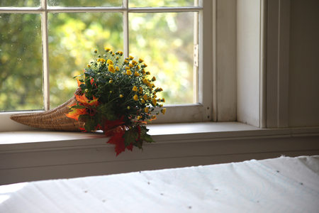 This is an interior scene depicting a clean room of mostly white accented with a bouquet of flowers in orange and yellow. The crisp fall colors are inviting, warm, and beautiful. This is a colonial window background set in the fall season. The room decor is festive and has an autumn feel. Stock Photo