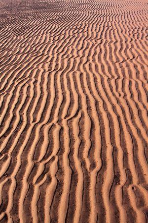 sandbar: A beach sand bar.