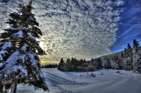 canada: HDR image of winter snow scene in New Brunswick, Canada. Stock Photo