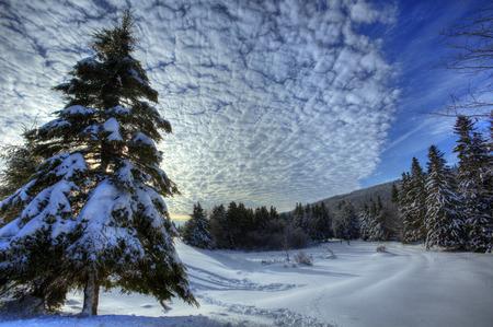 HDR image of winter snow scene in New Brunswick, Canada. Imagens