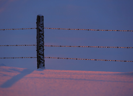 purposely: Ice glistens on a rural fence in the winter with blue and pink snow due to the setting sun -- purposely underexposed.