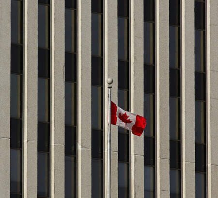 canada flag: Canadian flag flies against the background of an office building.