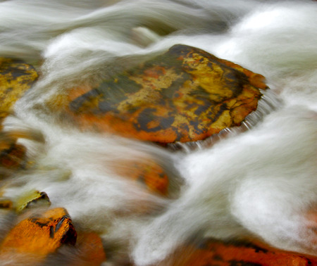 swiftly: Long exposure of swiftly moving stream with white water and rocks.