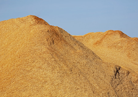 bark mulch: Pile of wood chips, sawdust against a blue sky. Stock Photo