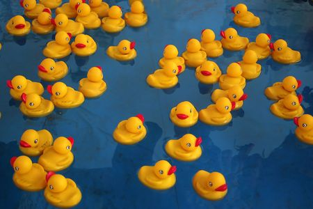 Rubber duckies floating in a blue pool. Stock Photo - 237524