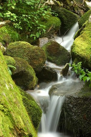 A water fall and green mossy rocks. photo