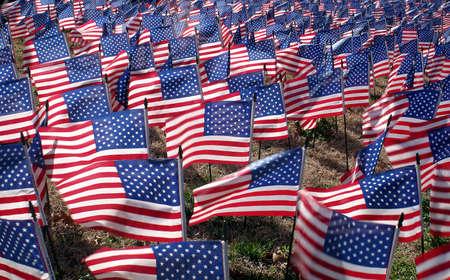 vermoord: 2286 vlaggen. Een voor elke Amerikaanse soldaat gedood in Irak. (vanaf Feb 27, 2006) Stockfoto