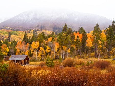 A lonely old cabin in the field surrounded by autumn trees