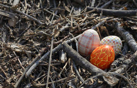 Easter eggs in a nest on the ground