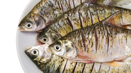 dorsal: carp fish in dish on white background Stock Photo