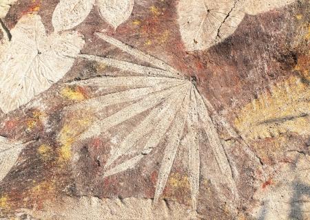 stone leaf background photo