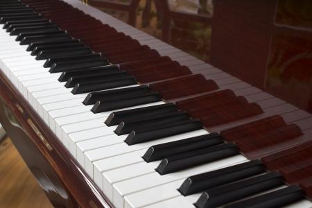 close-up of piano keys. close frontal view photo