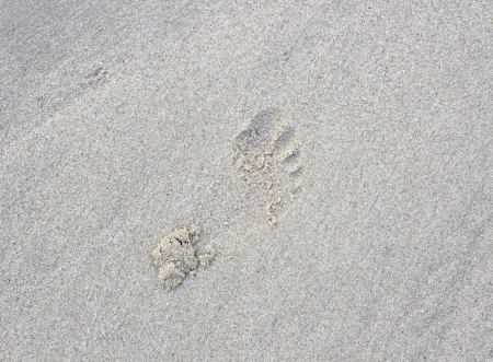 indentation:  footprints in the sand