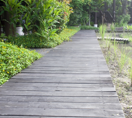 wooden walking way in Chiangmai northern Thailand photo