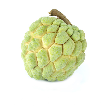 annona: Custard apple (Annona squamosa) on white background, Tropical fruit