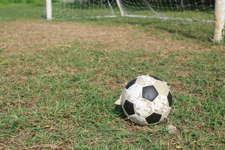 ballsport: Soccer ball on the field
