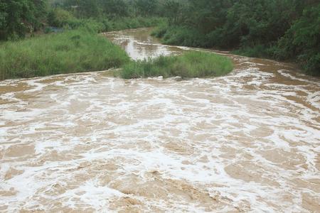 muddy: The muddy river water