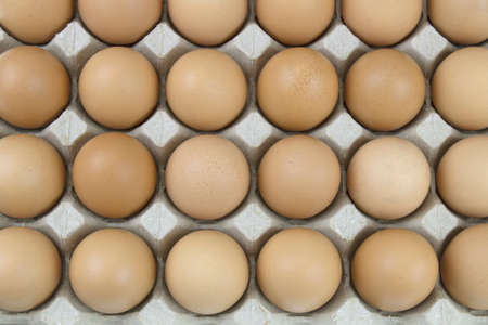 Chicken eggs are fresh in a cardboard package panel, Eggs in a paper egg panel