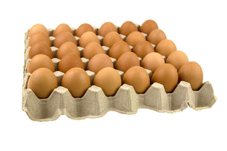 Chicken eggs are fresh in a cardboard package panel