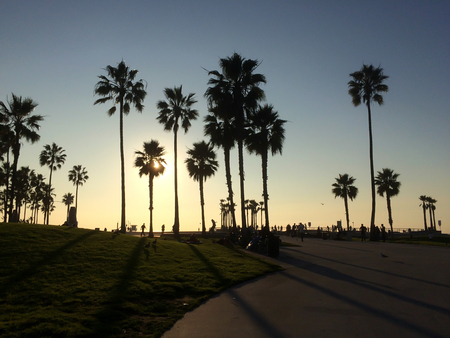Venice Beach , California, United States of America Stock Photo