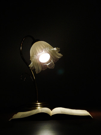 Book and lamp                photo