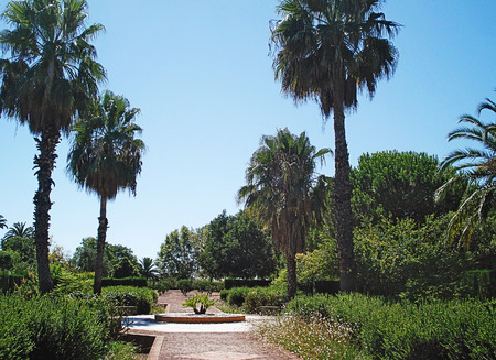 dwarfish: Park Exflora is a five hectare garden open to the public. The main terrace is at the entrance to the park in the style of the Italian renaissance and from where visitors can view the entire garden. Next to the large olive grove, there are different styles