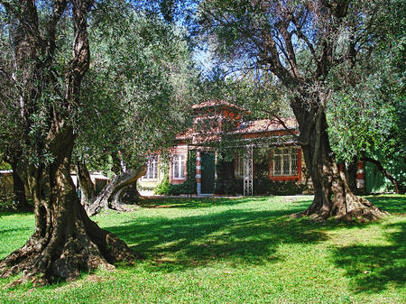 intimately: This plantation with hundred years old olive trees is a public garden. The olive tree is intimately linked with the life and development of  Beaulieu, from which it took its name of Olivo in ancient times.